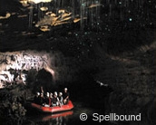 Spellbound Glowworm and Cave Tours